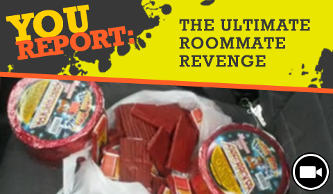 YouReport: The Ultimate Roommate Revenge